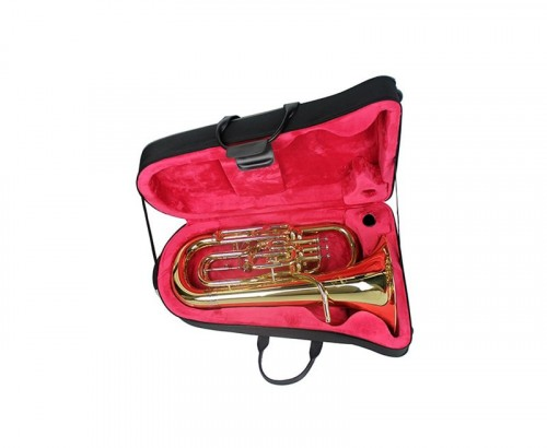 Instrument non inclus