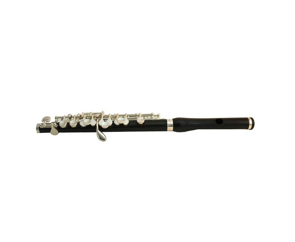 PRO-Flautín