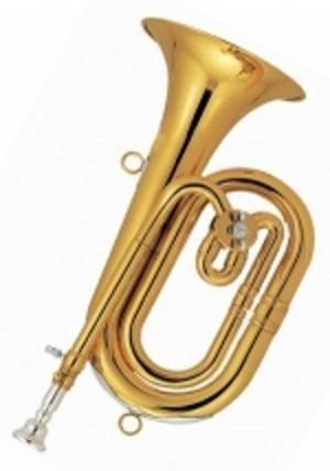 Spanish Horn